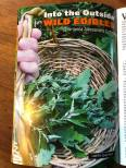 Into the Outside for Wild Edibles